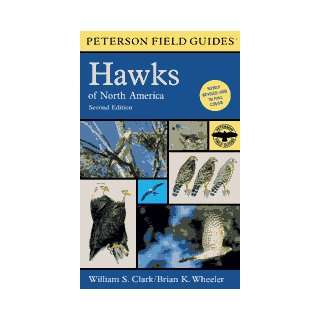 Peterson Field Guides   Hawks of North America Kitchen