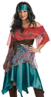 Bohemian Gypsy Fortune Teller Adult Halloween Costume