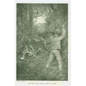 1897 Hunting Big Game in Africa India Venezuela
