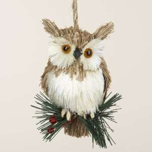 Club Pack of 18 Natural Owl on Pine Sprig Christmas