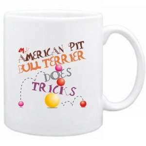 My American Pit Bull Terrier Does Tricks   Mug Dog